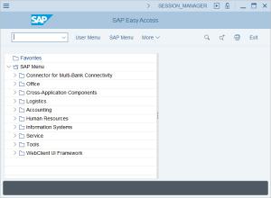 Uwe Brück   Video-Tutorial: First Steps in SAP S/4HANA, SAP Menu, Transaction Codes